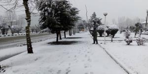 نخستین برف زمستانی کوهبنان را سفیدپوش کرد