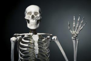 شناسایی یک نوع سلول استخوانی جدید