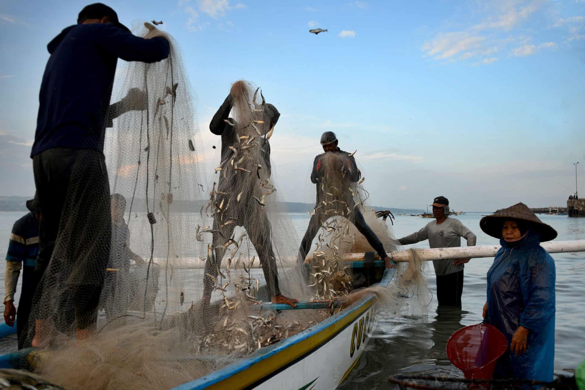 صید ماهیگیران در بالی اندونزی
