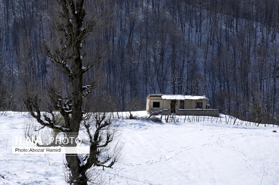 عکس/ خودنمایی زمستان در واپسین روزهای سال