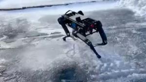 سگ رباتیک اسپات استوار تر از همیشه شد