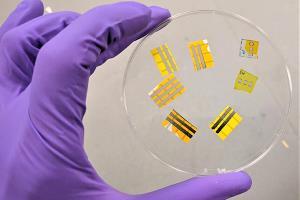 محققان برای اولین بار موفق به ساخت خالکوبی نورافشان شدند