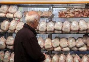 مرغ منجمد در سیستانوبلوچستان توزیع میشود