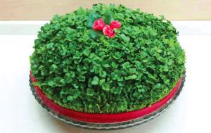 سبزه عید امسال را با سبزیجات خوراکی درست کنید