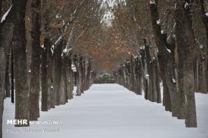 تداوم سرما در خراسان شمالی؛ آخر هفته برفی در انتظار استان است