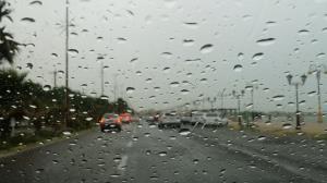 بارش باران در بوشهر ادامه دارد