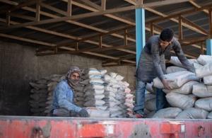 خروج سیمان از استان بوشهر ممنوع شد