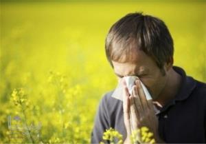 محققان توصیه کردند؛ در همه گیری کرونا مراقب حساسیت فصلی باشید