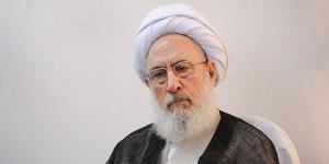 اظهارات متفاوت عضو مجمع تشخیص درباره FATF