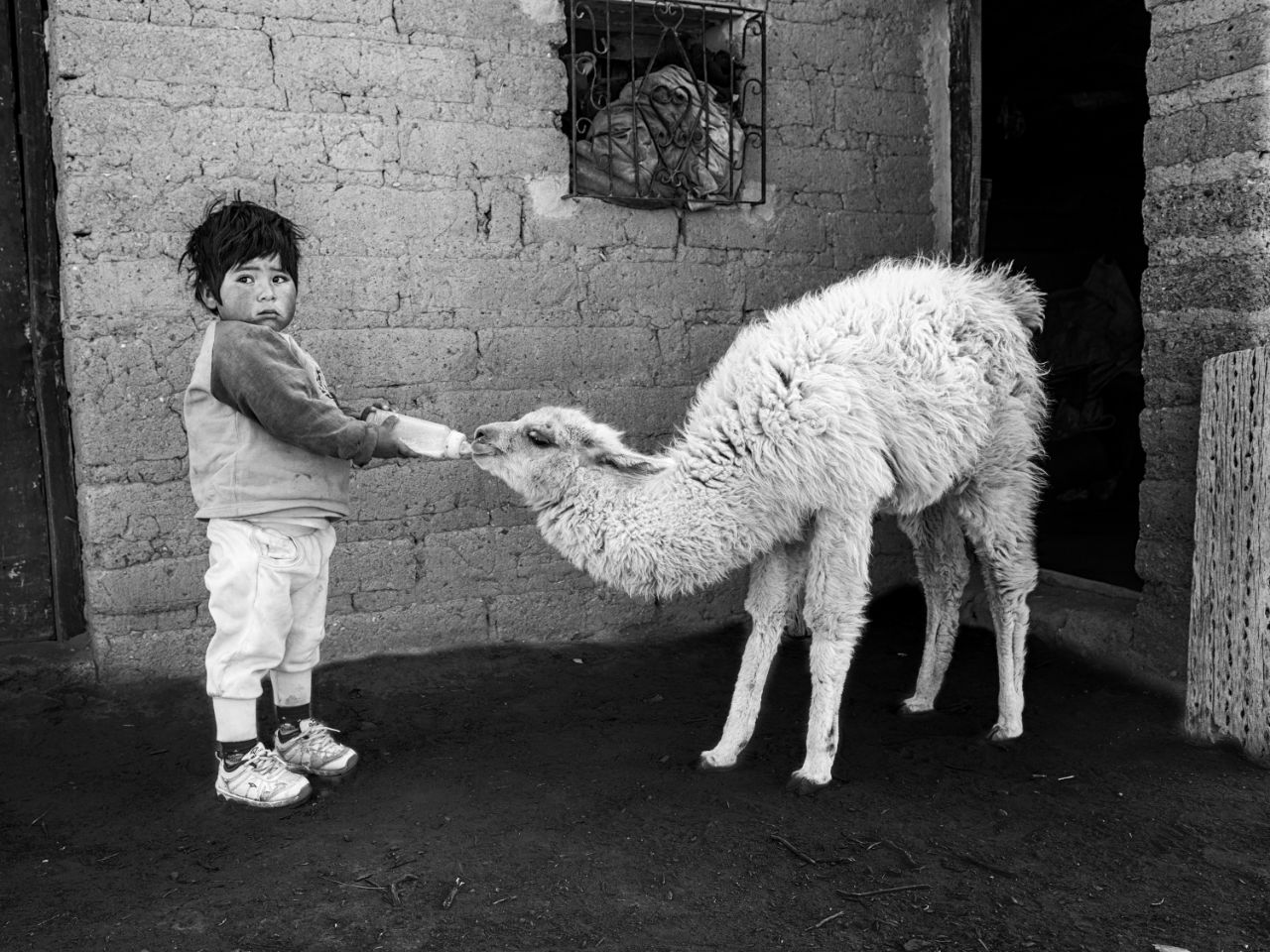 تصویری جالب از مهربانی کودک