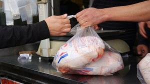 آغاز توزیع مرغ کشتار روز در مازندران