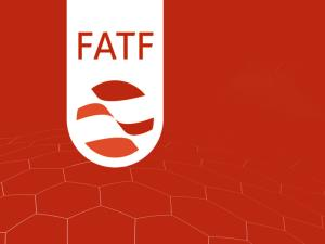 انتقاد سخنگوی فراکسیون مستقلین ولایی از بیانیه نمایندگان در مورد FATF