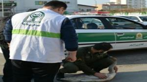 نجات قوی آوازخوان توسط پلیس بابلسر
