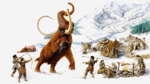 نتایج جالب تحقیقات در مورد تغییر سایز مغز انسان در طول تاریخ و ارتباط آن با شکار