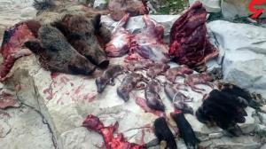 بازداشت منفورترین شکارچی ایران؛ او به گرازهای آبستن رحم نکرد