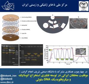 موفقیت محققان ایرانی؛ فناوری استخراج اتوماتیک و میکروفلویدیک DNA سلولی توسعه یافت