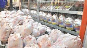 رئیس اتحادیه فروشندگان گوشت اهواز: بازار مرغ دست دلالان افتاده است