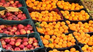 آغاز توزیع میوه شب عید از ۲۷ اسفند در استان سمنان