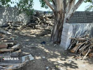 تخریب کوره غیرمجاز تولید زغال در حمیدیه