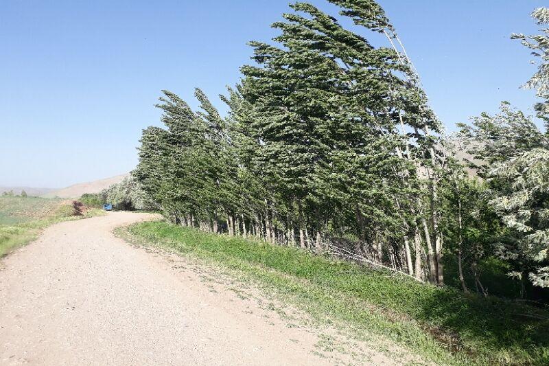 باد با سرعت ۷۰ کیلومتر بر ساعت مرکزی را فرا میگیرد