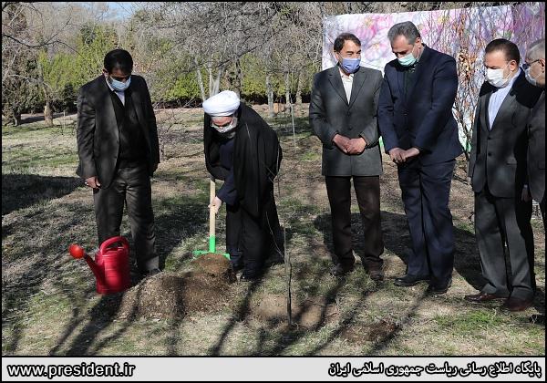 عکس/ رئیس جمهور در مراسم روز درختکاری