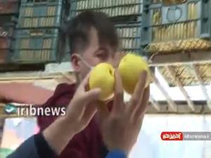 تنظیم بازار میوه در دست دلالان