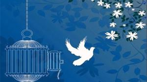 آزادی ۸۶ زندانی جرائم غیرعمد و مالی در گلستان