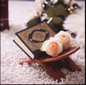 ضرب المثل ها/ مثل «کنار گود نشسته می گوید لنگش کن» در قرآن