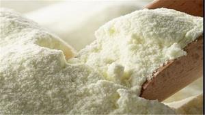 ضرورت صادرات ۱۰۰ هزار تن شیرخشک در سال