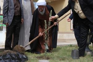 حکمت/ پاداش شیرین درختکاری