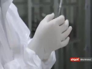 جزئیات آخرین مرحله از مطالعه فاز یک واکسن کووایران برکت