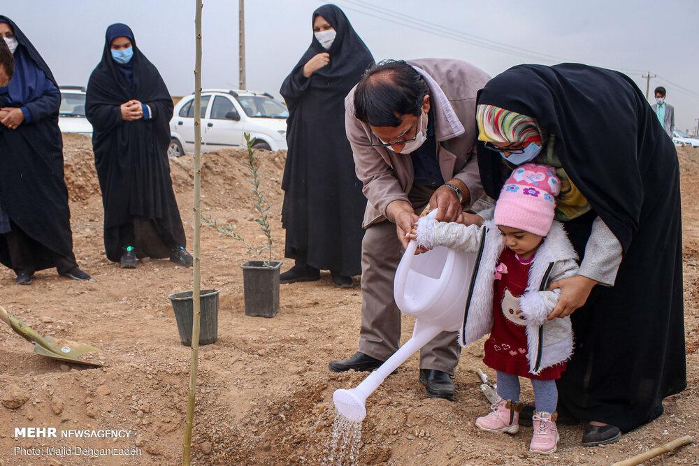 عکس/ «هر کودک یک نهال» طرح درختکاری امسال یزدیها