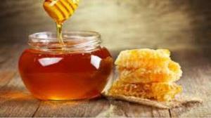 بزرگترین واحد فرآوری موم زنبور عسل در کاشمر راهاندازی شد