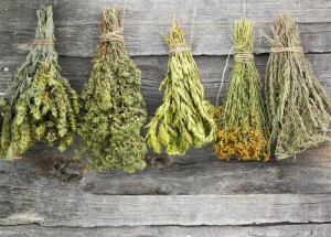 اگر فکر می کنید سبزیجات خشک شده ویتامین دارند، سخت در اشتباه هستید