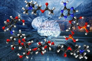 IBM یک پلتفرم هوش مصنوعی برای کشف مواد جدید راهاندازی کرد
