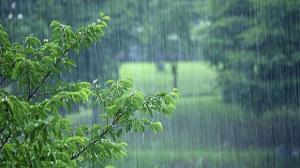 ثبت ۱۱ میلی متر باران در معلم کلایه