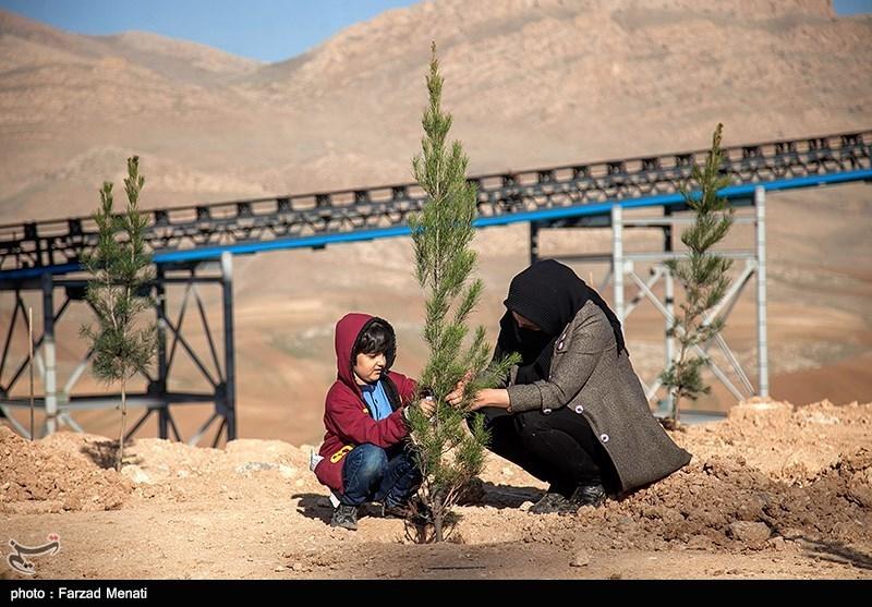 کاشت نهال بمناسبت هفته درختکاری در کرمانشاه