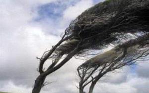 سرعت وزش باد در آذربایجانغربی به ۶۰ کیلومتر بر ساعت خواهد رسید