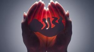 مجوز ۹۸ مورد سقط جنین در اردبیل صادر شد