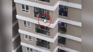 لحظه هولناک سقوط کودک از بالکن طبقه دوازدهم آپارتمان!