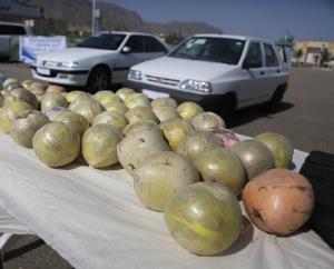 کشف ۹۰۹ کیلوگرم مواد مخدر توسط پلیس یزد