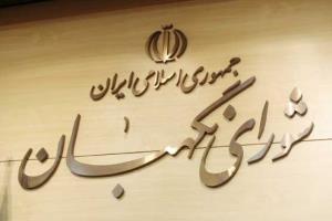 نماینده مجلس: مشکل شوراها این است که شورای نگهبان بر آنها نظارت ندارد
