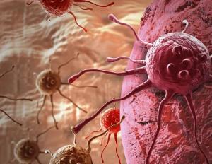 ۳ عامل بروز سرطان ها/ روش های طبخ گوشت و تاثیر آن بر بروز سرطان