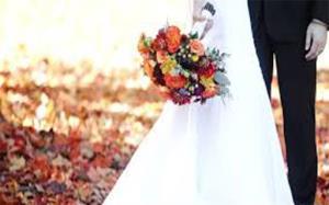 عروسی که خانواده همسرش را بیآبرو کرد