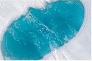 لباس شستن ما، باعث آلودگی سرزمین شمالگان شده است