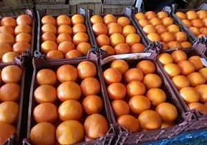 عرضه ۹۰ تن میوه شب عید در شادگان