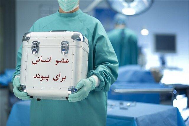 کرونا تعداد اهدای عضو بیماران مرگ مغزی را در خراسان شمالی کاهش داد