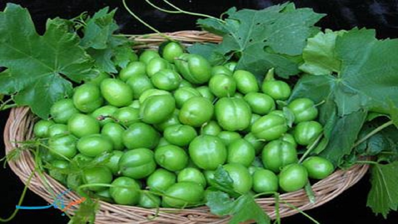 هسته میوه ها به دلیل ترکیبات سمی نباید مصرف شوند