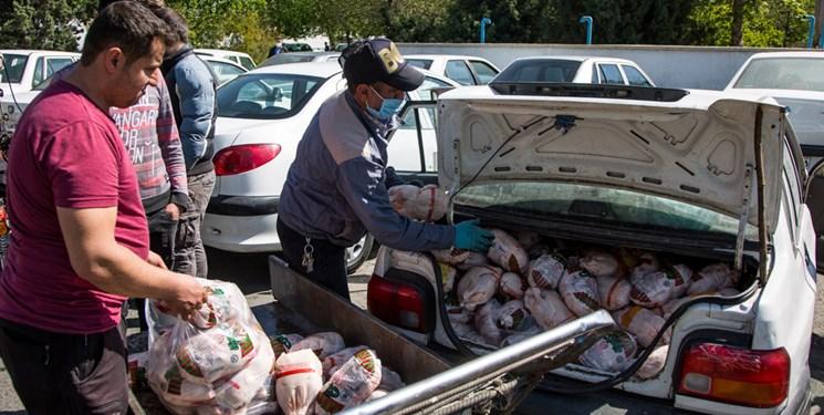 بازار مرغ مازندران زیر ذرهبین دادستانها