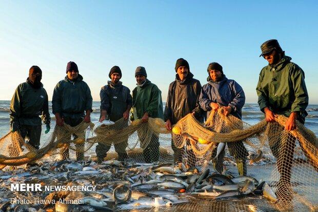 مهلت صید ماهیان استخوانی از دریای خزر تمدید شد
